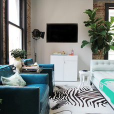 Contemporary Living Room by Caitlin & Caitlin Design Co.