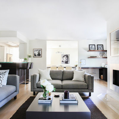 Small danish formal and open concept light wood floor living room photo in Los Angeles with white walls, a ribbon fireplace and a metal fireplace