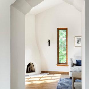 ミネアポリスの大きい地中海スタイルのおしゃれなリビング (白い壁、淡色無垢フローリング、コーナー設置型暖炉、漆喰の暖炉まわり、茶色い床) の写真
