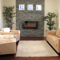 Contemporary Living Room by Realstone Systems