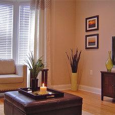 Contemporary Living Room by Sandra Pirao Interiors