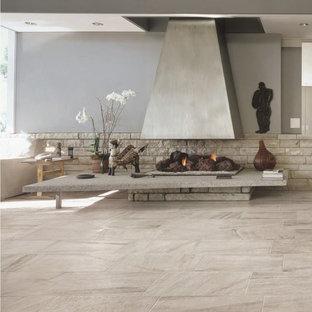 Ispirazione per un piccolo soggiorno minimal chiuso con sala formale, pavimento in gres porcellanato, stufa a legna e cornice del camino in pietra
