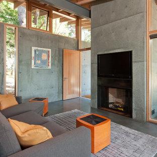 Inredning av ett modernt vardagsrum, med en spiselkrans i betong, betonggolv, grå väggar, en standard öppen spis och en inbyggd mediavägg