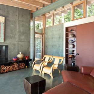 Modern inredning av ett vardagsrum, med betonggolv, ett finrum, grå väggar och en standard öppen spis