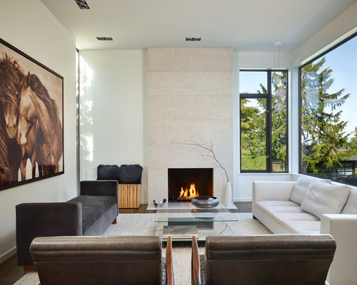 SaveEmail - Fireplace Reface Design Ideas & Remodel Pictures Houzz