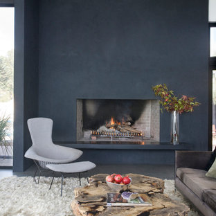 Inspiration for a modern living room remodel in San Diego with black walls