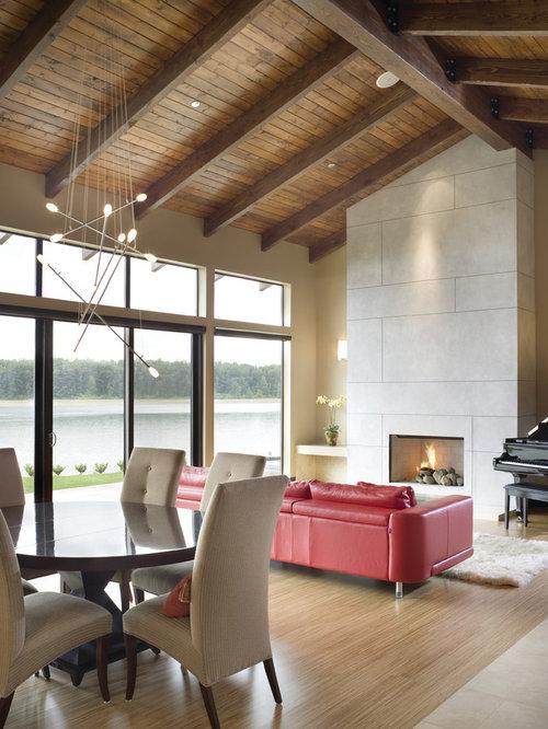 Fireplace Facade Houzz