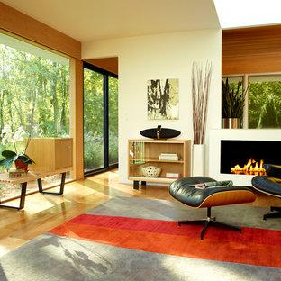 Esempio di un soggiorno minimalista con pareti beige e camino lineare Ribbon