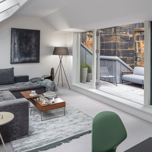 Inspiration for a medium sized contemporary open plan living room in Edinburgh with white walls, carpet, grey floors and a vaulted ceiling.