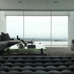 Immagine di un ampio soggiorno minimal aperto con sala formale, pareti bianche, moquette, nessun camino e nessuna TV