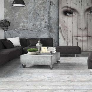 Ispirazione per un soggiorno industriale di medie dimensioni e aperto con pareti grigie, pavimento in gres porcellanato e pavimento grigio
