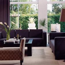 Contemporary Living Room by Tomas Frenes Design Studio