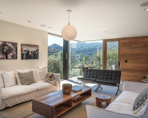 Top 30 Contemporary Living Room Ideas & Designs | Houzz