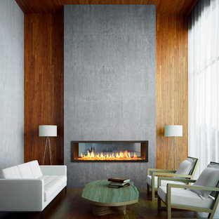 Imagen de salón contemporáneo, pequeño, sin televisor, con chimenea de doble cara