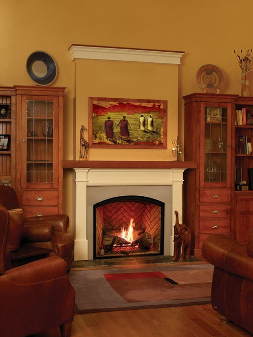 Gas Fireplace Insert Home Design Ideas Pictures Remodel