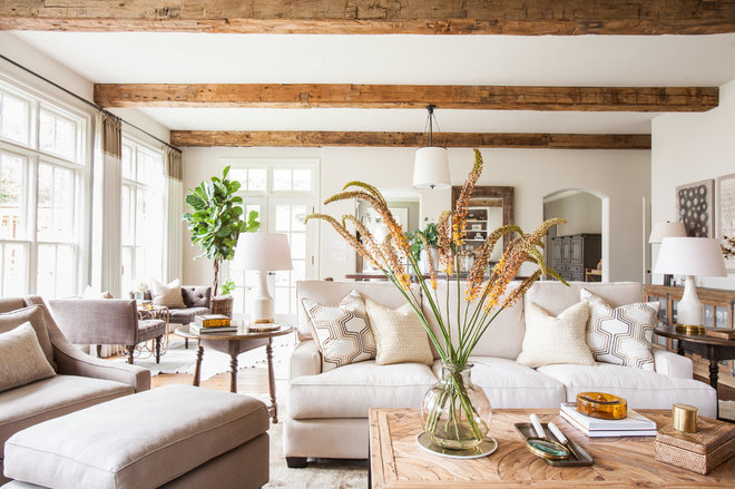 Transitional Living Room by Marie Flanigan Interiors