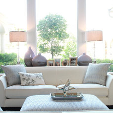 Transitional Living Room by Traci Connell Interiors