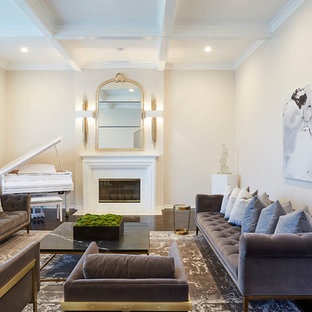 Living room - transitional living room idea in Los Angeles with a music area, beige walls and a ribbon fireplace