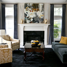 Transitional Living Room by Robin Gonzales Interiors