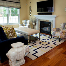 Transitional Living Room by CANDICE ADLER DESIGN LLC
