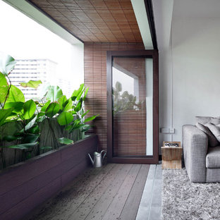 Tropical Modern Apartment