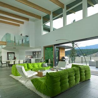 Modelo de salón contemporáneo con suelo de baldosas de porcelana y marco de chimenea de baldosas y/o azulejos