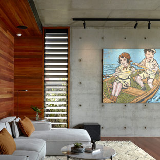 Contemporary open concept living room in Brisbane with grey walls, dark hardwood floors, brown floor and wood walls.