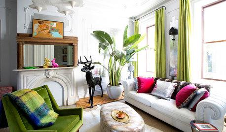 12 der schönsten großen Zimmerpflanzen