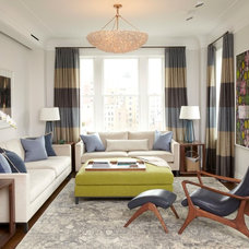 Transitional Living Room by Dnotisdesign