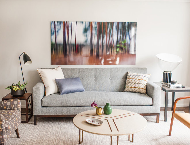 Transitional Living Room by Idea Space Architecture + Design