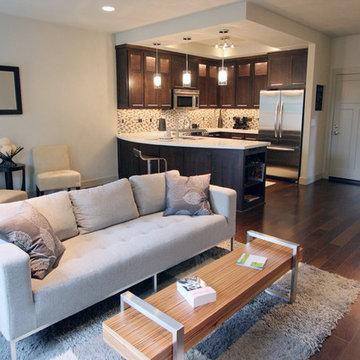 Urban Living Room + Kitchen