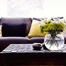 Contemporary Living Room by Blue Garnet Design/The Design Mill