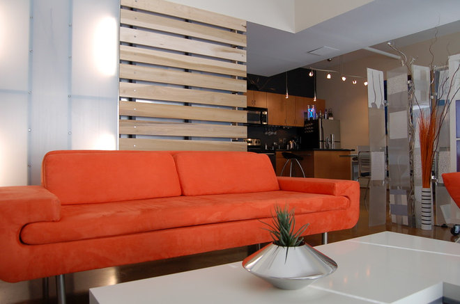 Contemporary Living Room by Freespace Design LLC