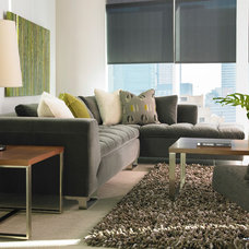 Contemporary Living Room by Thingz Contemporary Living
