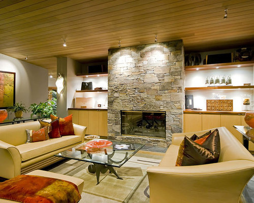 Fireplace Lighting Design Ideas  Remodel Pictures  Houzz
