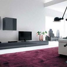Modern Living Room by darius