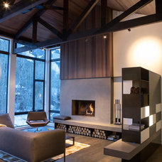 Contemporary Living Room by LEE GILMAN BUILDERS INC