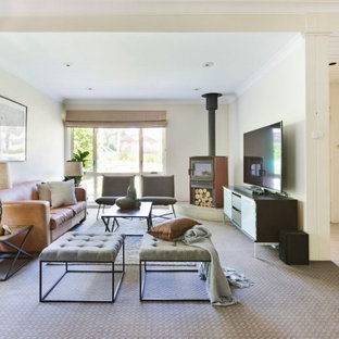 Inspiration for a large contemporary enclosed carpeted and beige floor living room remodel in Sydney with beige walls, a wood stove, a metal fireplace and a tv stand