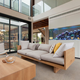 Design ideas for a contemporary living room in Melbourne with concrete floors and a wall-mounted tv.