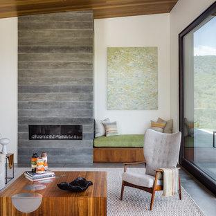 サンフランシスコのアジアンスタイルのおしゃれなリビング (白い壁、コンクリートの床、横長型暖炉、コンクリートの暖炉まわり、グレーの床) の写真