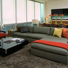 Contemporary Living Room by Michael Richman