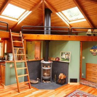 Foto di un soggiorno rustico con pareti verdi, pavimento in legno massello medio e stufa a legna