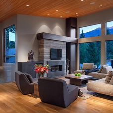 Contemporary Living Room by Synthesis Design Inc.