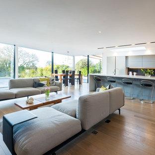 Modern living room in Devon with light hardwood flooring.