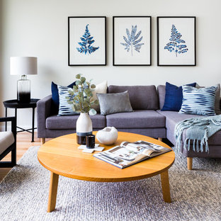 Photo of a transitional living room in Sydney with white walls, light hardwood floors and beige floor.