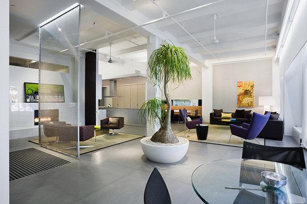 Modern Vardagsrum by WXY architecture + urban design