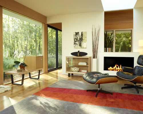 Modern Living Room Idea In San Francisco Part 58