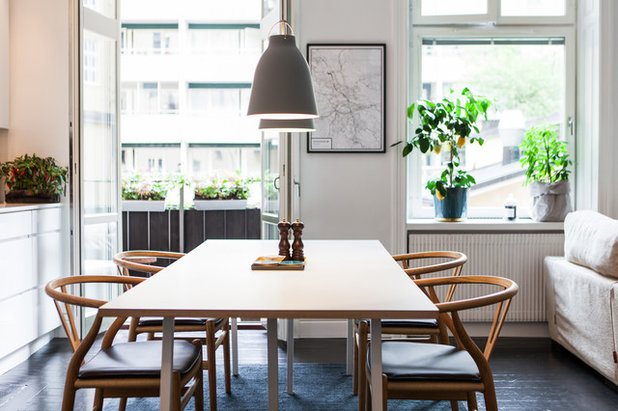 Scandinavian Dining Room by Alexander White