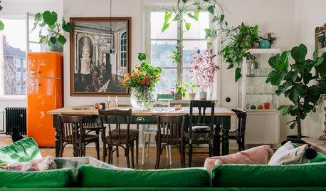 Zimmerpflanzen Gestaltungsideen zimmerpflanzen ideen tipps