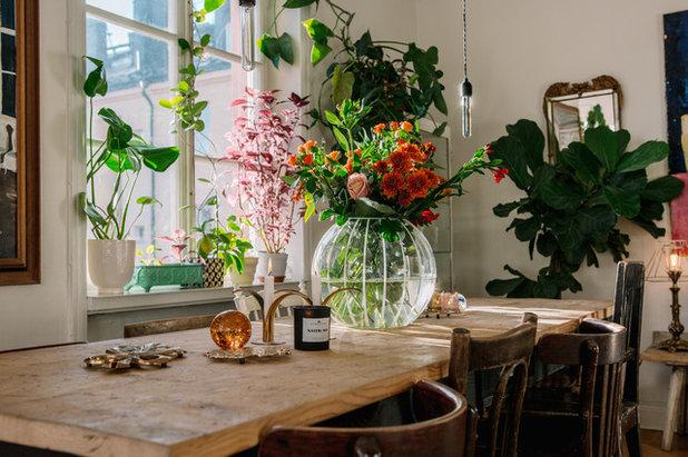 Éclectique Salle à Manger by Nadja Endler | Photography